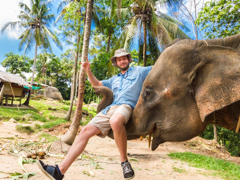 Elephan-lifting-a-tourist