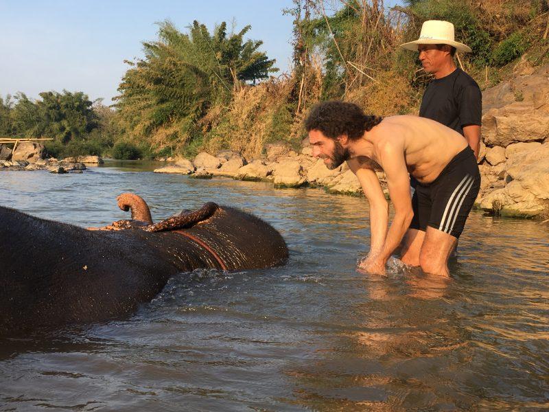 sukhothai elephant1